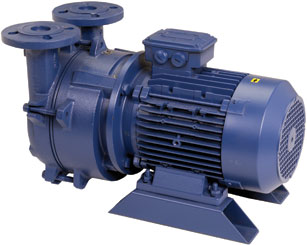 Liquid Ring Vacuum Pumps: Compact, Motor Mount