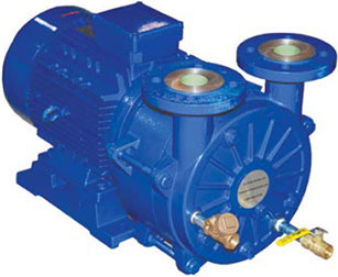 Monobloc Liquid Ring Vacuum Pumps for Plastic Extrusion Sizing Tanks