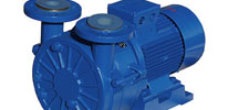 Liquid Ring Vacuum Pumps