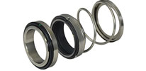 Liquid Ring Mechanical Seals